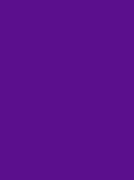 FROSTED MATT 40 1000M PURPLE